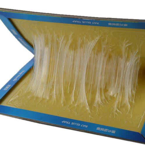 Rat Glue Board Book