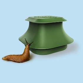 Slug & Snail Traps